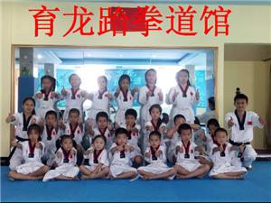 471159龙南县育龙跆拳道