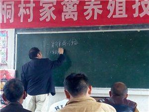 铜仁职院教授下乡养殖培训
