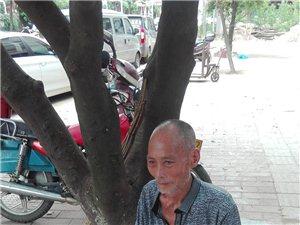 寻找家人的老人