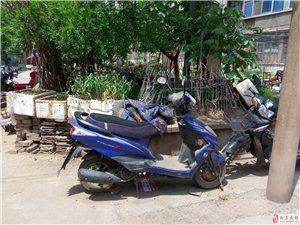 急售二手踏板助力摩托车
