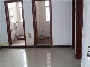 新房出租2室1厅1厨1卫,年租