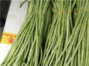 专业蔬菜配送,净菜加工,食堂承包