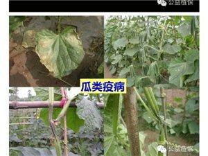 润丰年农资服务中心