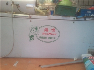 两米的冰柜便宜处理