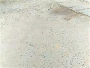 周集镇迎水村乡村道路严重破坏,请政府关注!