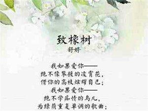 最美的十二首诗,一生至少读一次