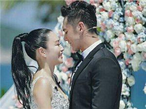 开花结果45岁钟丽缇10月嫁张伦硕