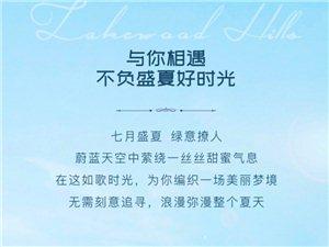 翠湖香山��馇蚣��w婚�Y嘉年�A百名佳偶全城招募