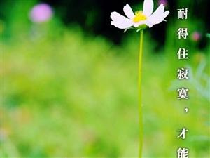 只有耐得住寂寞,才能收获最满意的人生。
