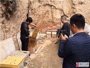 中煤地质总局驻瓦泉村第一书记扈猛帮扶的一天