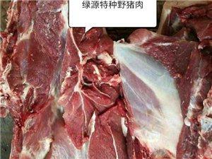 特�N野�i肉