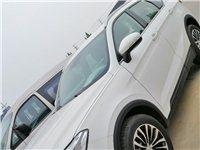 新車中華v6