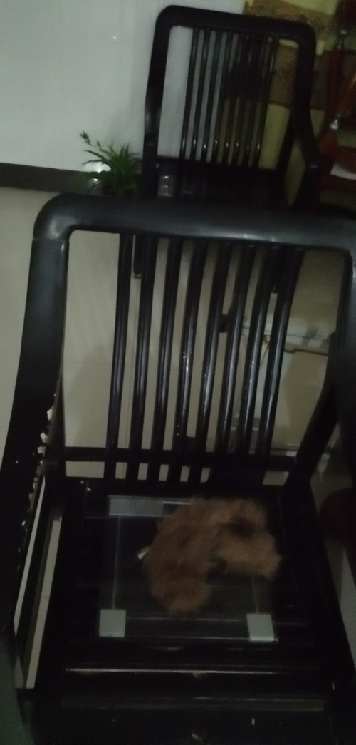 两张单人沙发黑色 80便宜出 自己拖走 联系电话15395560995
