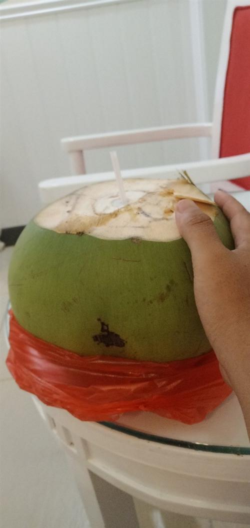 儋州市那大市区大量批发青椰老椰子,批发椰青价格个起批4.3元包送,果大椰子水甜,老椰子4.5包送,都...