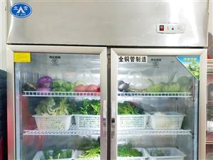 �c菜保�r冰柜