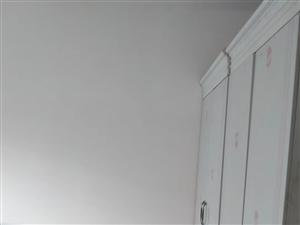 富豪金城3室 2廳 2衛1000元/月