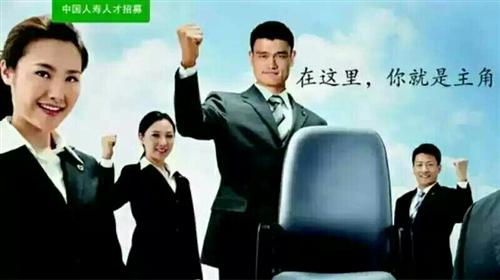 中國人壽保險股份有限公司開陽支公司