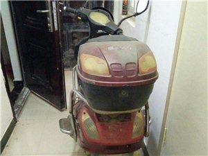 台羚电动车皇家赛车