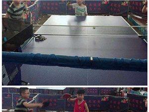体育中心体育馆乒乓球培训中心暑期招生