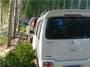 【视点呼吁】环绕大堤绿化带可否改建停车带。