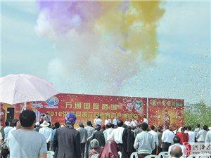 2016洪泽县第六届春季房展博览会圆满开幕
