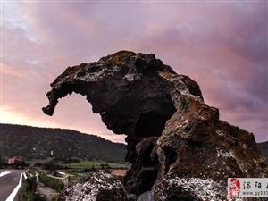 意大利古怪岩石酷似大象 看呆众人
