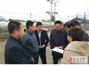 铁力市政府副市长徐家宏到双丰镇调研美丽乡村建设工作