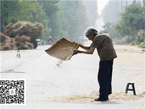 【九州乡味】古蔺农家美食平台、购物APP、方便大家查询了解