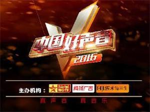 2016《中国好声音》忠县站选手网络投票活动