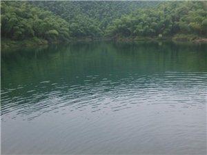 �k王山寿山糊