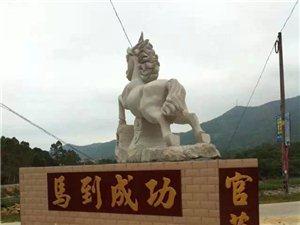 广东省高州市谢鸡官庄村(图片集)