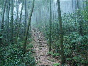 5月15日莫干山大环线【前进汇户外第九站】