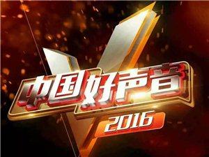 2016中国好声音公园里杯澳门太阳城娱乐赛区