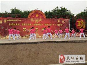 武功县离退休干部文化活动
