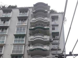 华弘大厦某单元住户长期向威尼斯人平台区国土房管局乱扔垃圾,严重危害住户生命财产