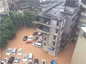 信宜520特大暴雨多处出现水浸