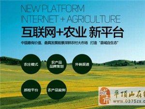 发展农村电商为农业现代化插上腾飞翅膀