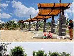 汤阴的城南公园开放啦!