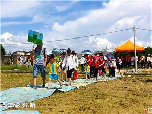 哈美幼儿园零度养殖家园夏季亲子活动