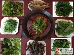 野菜香辣�~――美味 ��惠 �G色