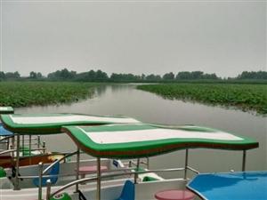 雨中晨骑小北湖