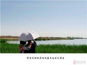"""2016年""""世界环境日"""",新城草湖生态现状令人堪"""