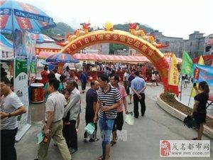信宜2016年第五届三华李品果节昨日已拉开帷幕