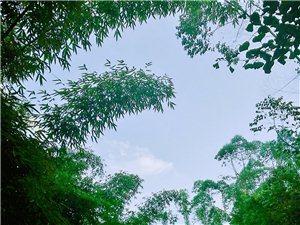 白鹤山――幽居寺