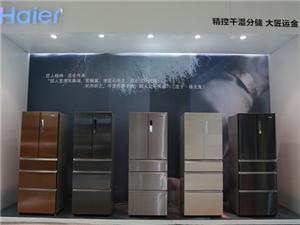 1季度海外数据回顾:海尔冰箱转型成效明显