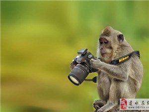 拍风光,要避免这4大相机设定误区