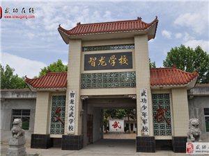 武功智龙武道馆――2016暑期武术培训公告