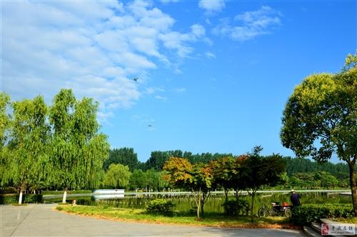 平舆湛蓝的天空;;;;;相机发霉了,拿出来晒晒。