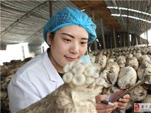 �C���N蘑菇的小姑娘,�楹畏��省��好工作?