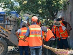 秒速飞艇薛庄镇开展存量垃圾集中整治活动初见成效